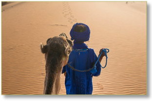 EXPERT GUIDES in Morocco